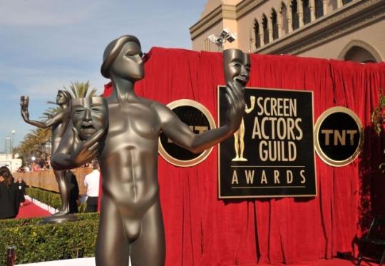 screen_actors_guild_awards_1390105731_540x540