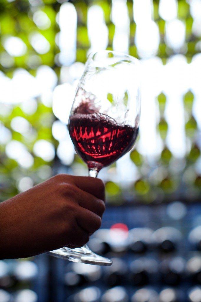 Chiara - red wine 2 - 02.07.14[1]