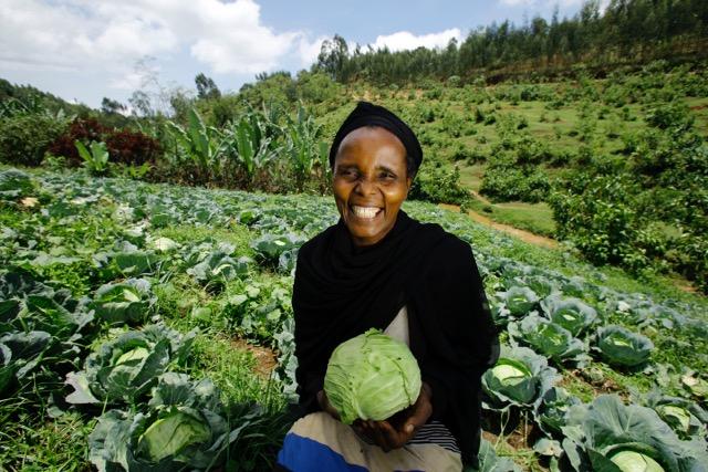 Community vegetable farm_218_JoshEstey